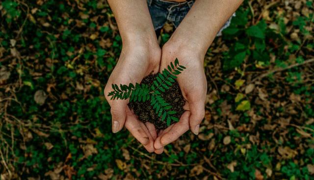 Актуальность защиты окружающей среды фото